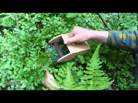 Приспособление для сбора клюквы своими руками видео