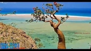 Video Pulau Tempat Di Kurungnya DAJJAL On The Spot PART 2 MP3, 3GP, MP4, WEBM, AVI, FLV Mei 2019