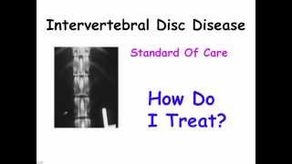Intervertebral Disc Disease