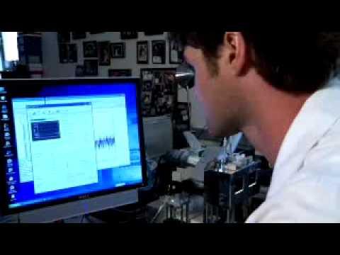 Andrew - Student der Biochemie-Abteilung