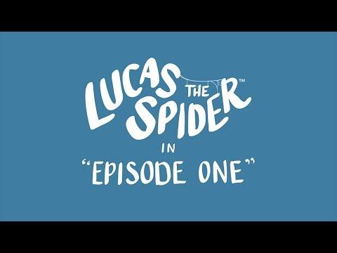 O to Lucas! Najbardziej uroczy pająk na świecie, który wyleczy cię z arachnofobii :D