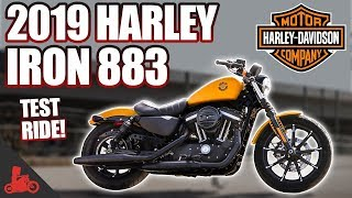 2. 2019 Harley-Davidson Iron 883 TEST RIDE!
