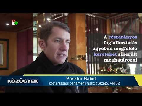 Dr. Pásztor Bálint az elmúlt négy évet értékelte-cover