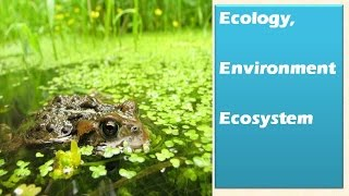 1.1 Ecology, Environnment and Ecosystem : Environment and ecology [Learn Online]