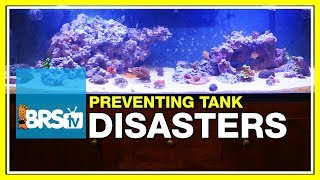 Week 50: BRS160 disaster averted! Fixing catastrophes in the reef tank | 52 Weeks of Reefing #BRS160