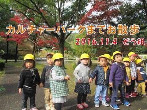 八幡保育園(福井市)カルチャーパークまでぞう組(2歳児)がお散歩!どんぐりや落ち葉を拾って秋の自然に触れてみました。