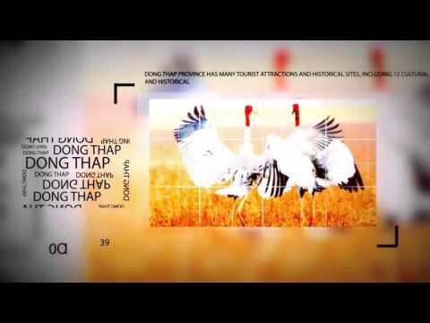 Đồng Tháp Đất Sen Hồng ! YouTube
