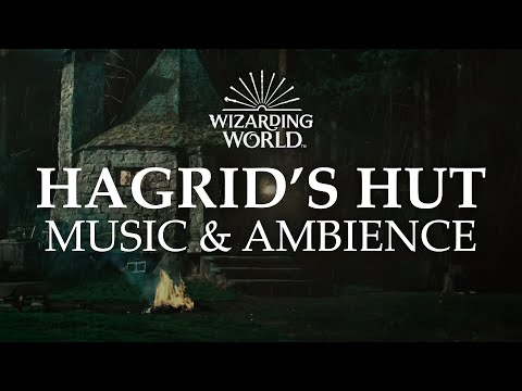 Hagrid's Hut | Harry Potter Music & Ambience - Rain and Night Sounds Near the Forbidden Forest