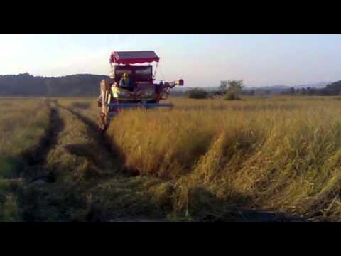 รถเกี่ยวข้าวเกษตรพัฒนา