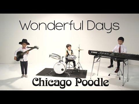 , title : 'Chicago Poodle「Wonderful Days」MV'