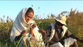 Video LYE.tv - Beraki Gebremedhin - Qedawitey   ቀዳዊተይ - New Eritrean Music 2015 MP3, 3GP, MP4, WEBM, AVI, FLV September 2018