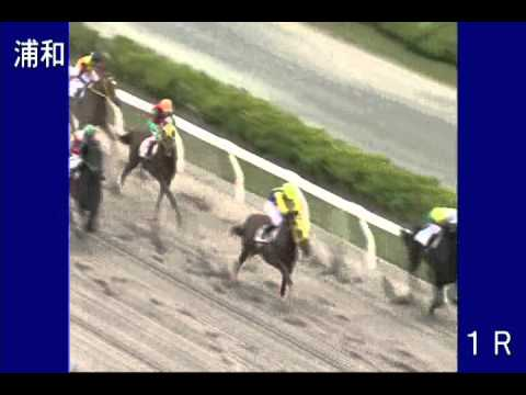 「馬主は、おそらく「おっぱい星人」!競走馬『ジーカップダイスキ』の出走レース。」のイメージ
