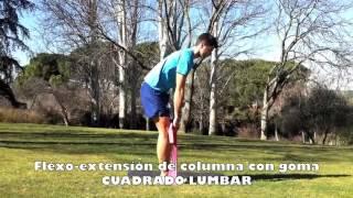 Lumbares. Flexo - extensión de tronco de pie
