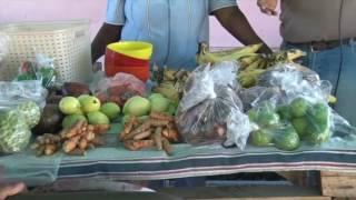 FNL September - Chato Farmers Market