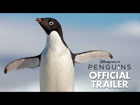 The First Trailer for Disneynature s Penguins