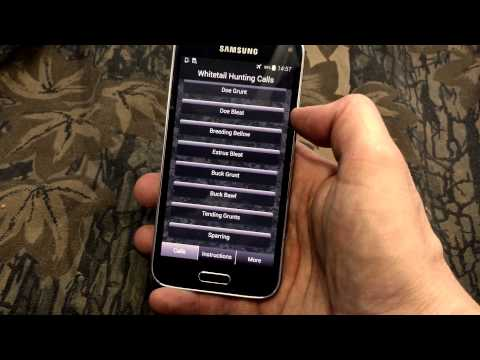 Video of Whitetail Hunting Calls