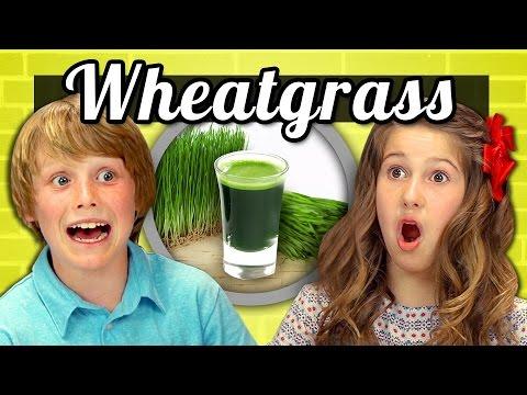 KIDS vs. FOOD - WHEATGRASS SHOTS