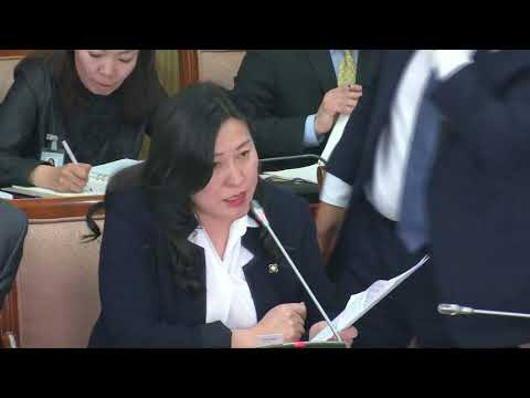 О.Баасанхүү: Органик хуулийн зохицуулалтыг Үндсэн хуульд оруулах шаардлагагүй