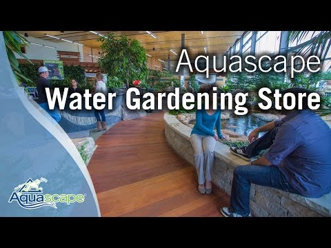 "The ""New and Improved"" Aquascape Water Gardening Store"
