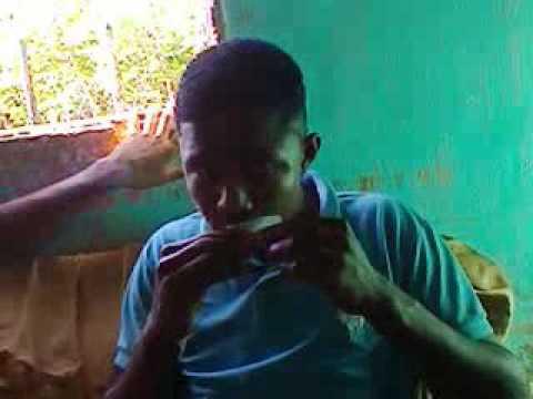Os meninos da pacaia em Aratuipe