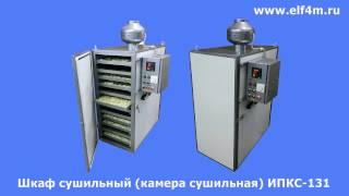 Видео: Шкаф сушильный (камера сушильная) ИПКС-131.