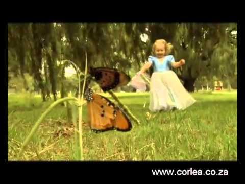 Corlea Botha   SONVANGER OFFICIAL   AMPTELIKE MUSIEK VIDEO