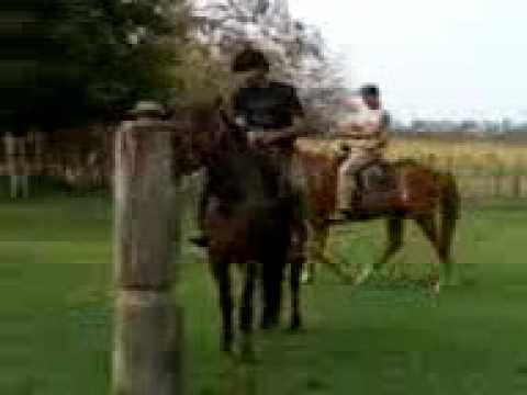 Índio Domador (видео)