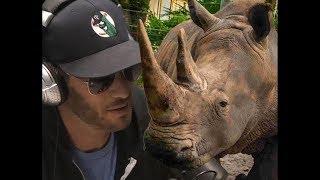 Rhino Story | Josh Wolf
