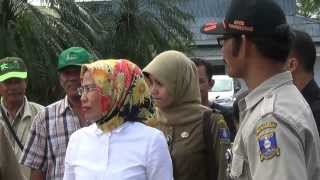 Ratu Tatu Chasanah Memantau Bendung Pamarayan, Sungai Ciujung, di Kabupaten