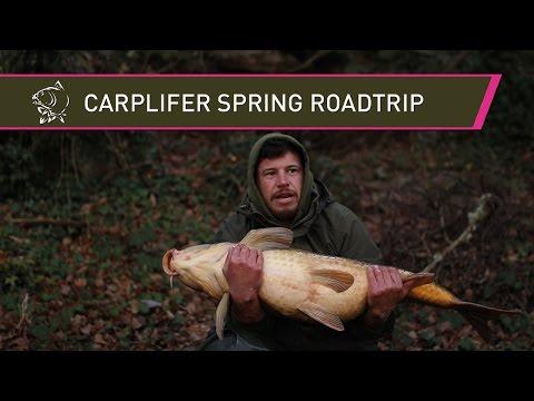 Carplifer Spring Road Trip - Carp Fishing in the Pyrenees mountains!