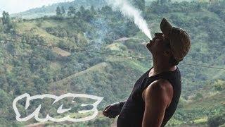 Kings of Cannabis (Full Length Documentary)