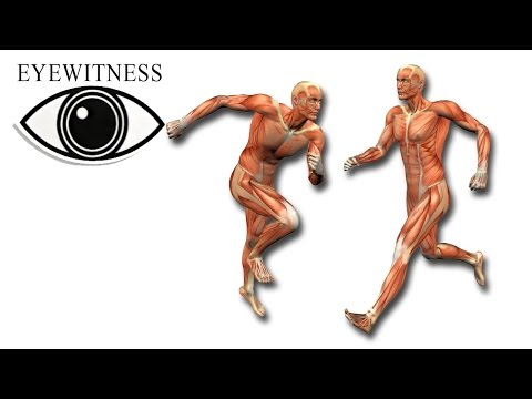 EYEWITNESS | Human Machine | S3E3