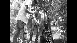 دلایل گرایش زنان به مواد مخدردر ایران