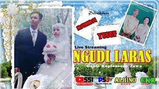 Live streaming  Krwt.NGUDI LARAS  // ALBINO// CKR sound