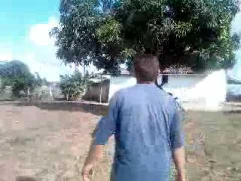 OS MELHOR  VIDEOS DA FAMILIA LIRO EM LAGOA DO OURO