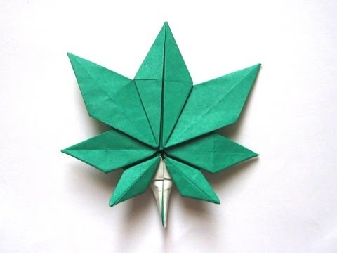 Plant Tutorial - 042 -- Maple Leaf (part 1 of 2)