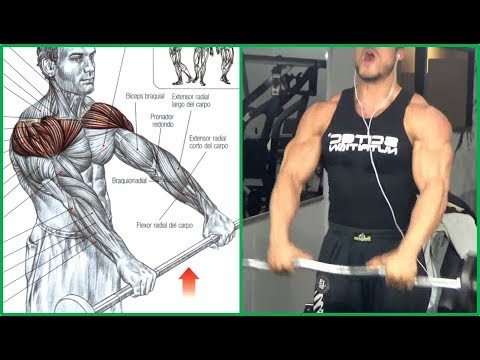 8 Shoulders Workout,  8 Ejercicios para Hombros   Fitness Body (видео)