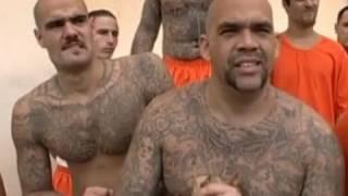 Video Racial segregation in San Quentin prison - Louis Theroux - Behind Bars - BBC MP3, 3GP, MP4, WEBM, AVI, FLV Maret 2019