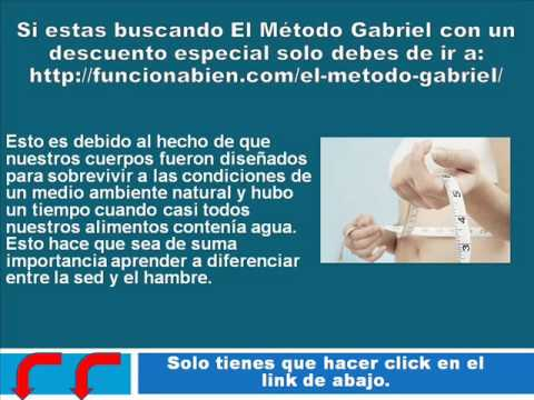 Hábitos alimentarios de el Metodo Gabriel