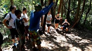 In The Jungle - Chiang Mai Thailand Things To Do