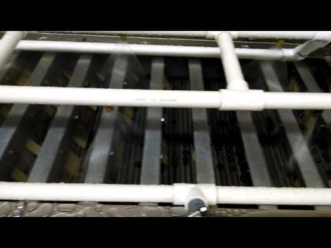 SVF aronia cleaning line test run