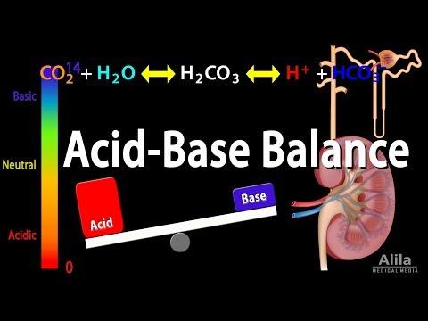 Acid Base Balance, Animation.