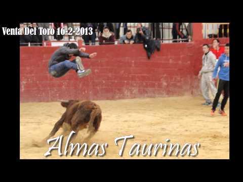 Capea y encierro Venta del Toro 16 2 2013