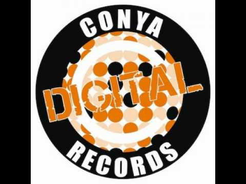 Danarchism - I've been through [Conya Records]