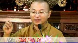 Vấn Đáp: Thương Yêu Sự Sống - 2/2 - Thích Nhật Từ - TuSachPhatHoc.com