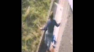 Jambo shot to international news stardom overnight on August 31, 1986, when five year old Levan Merritt fell into the gorilla...