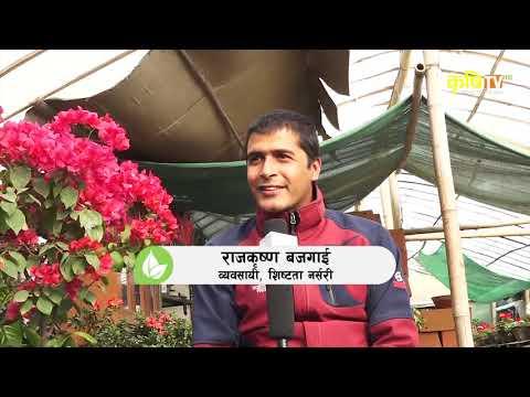 Puspanjali - Raj Krishna Bajgai