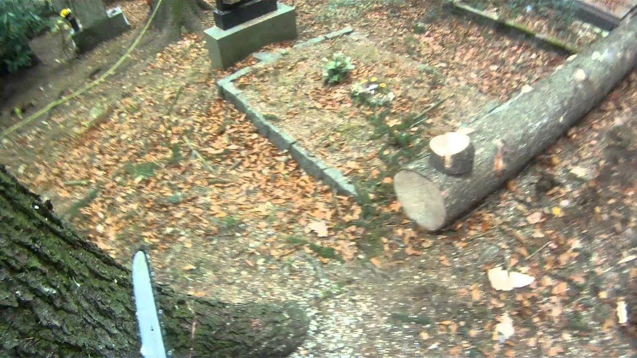 Lesní hřbitov 2