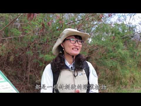 龜山系列-1 登山口