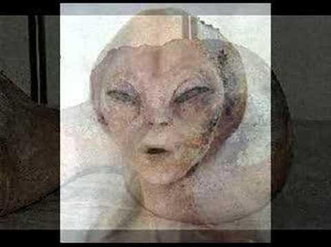 incredibili immagini di ufo e alieni catturati